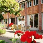 Mazzard Farm Courtyard + geraniums